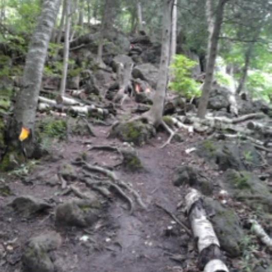 Rad trails at Rattlesnake Point Conservation Area