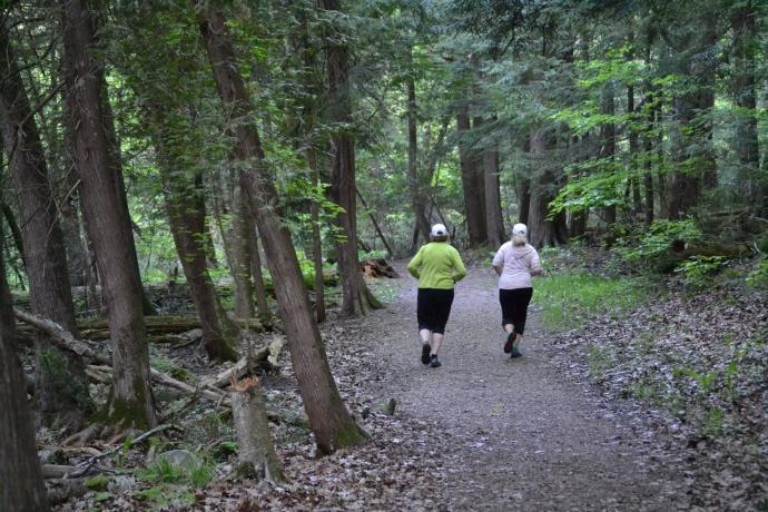 """#100happydays 6am trail run"""""""