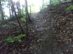 Mud trails
