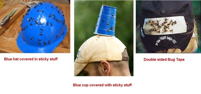 Bug hat selection