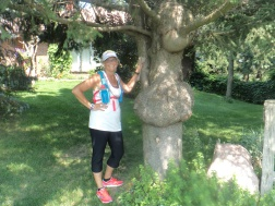 Glenis and her knotty tree